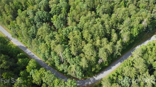 3421 Baptist Camp Road, Connelly Springs, NC 28612 (#3760773) :: MartinGroup Properties