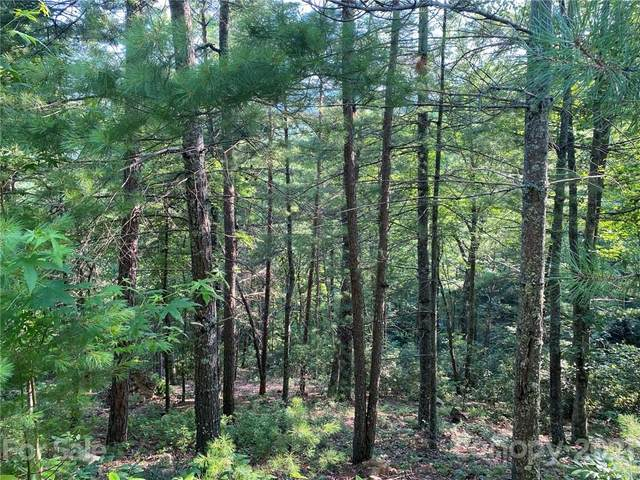TBD High Mountain Road #5, Hot Springs, NC 28743 (#3761155) :: Home Finder Asheville