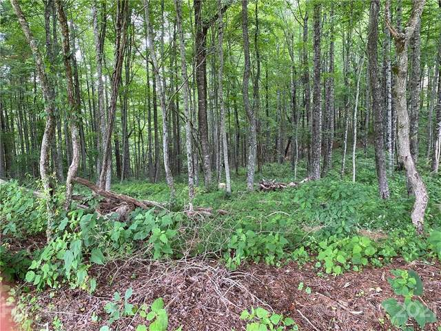 000 Overlook Drive 44,45, Spruce Pine, NC 28777 (#3761335) :: Caulder Realty and Land Co.