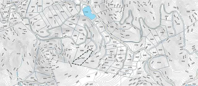 L418 Pine Mountain Drive L418, Brevard, NC 28712 (#3761674) :: Rowena Patton's All-Star Powerhouse