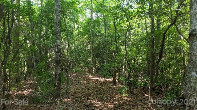 20.5 Acres Old Fort Road, Black Mountain, NC 28711 (#3761705) :: Modern Mountain Real Estate