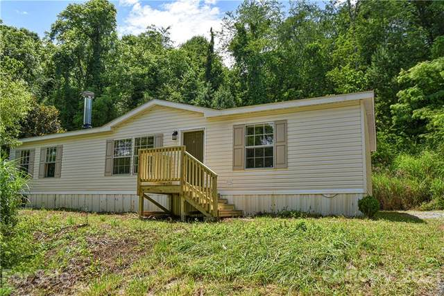 86 Lower Grassy Branch Road, Asheville, NC 28805 (#3761787) :: Modern Mountain Real Estate