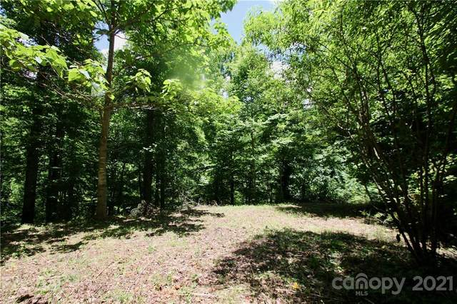 Off Of Rushing Creek Cove #1, Clyde, NC 28721 (#3761998) :: Keller Williams South Park