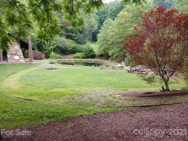000 Little Pond Pass #9, Mars Hill, NC 28754 (#3762231) :: Stephen Cooley Real Estate Group