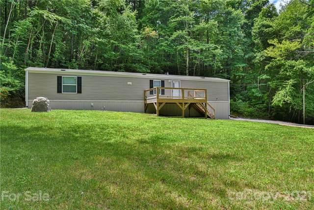 169 Eller Cove Road, Weaverville, NC 28787 (#3762559) :: Caulder Realty and Land Co.