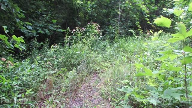 00 Mckinney Mine Road, Spruce Pine, NC 28777 (#3762946) :: The Allen Team