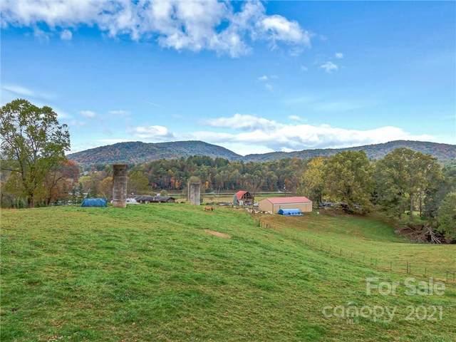 253 Annie Bell Lane, Horse Shoe, NC 28742 (#3763133) :: High Vistas Realty