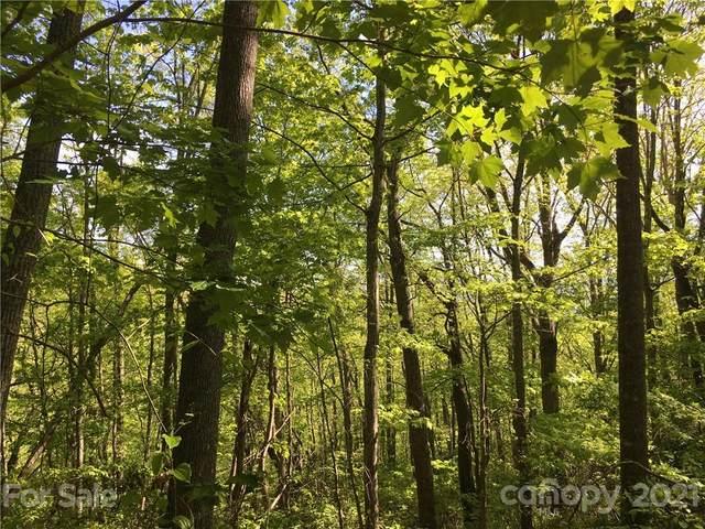 74 Frank Davis Road #74, Waynesville, NC 28785 (#3763154) :: Stephen Cooley Real Estate Group