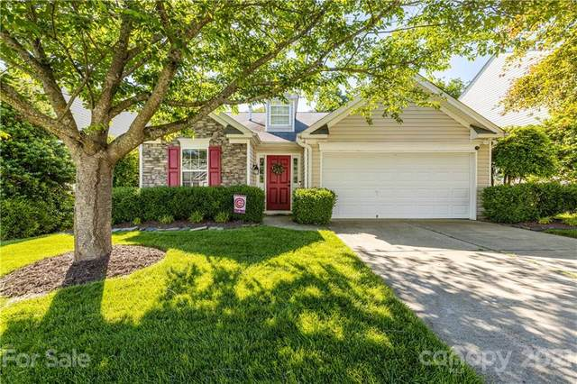 5944 Leawood Run Court, Charlotte, NC 28269 (MLS #3763401) :: RE/MAX Impact Realty