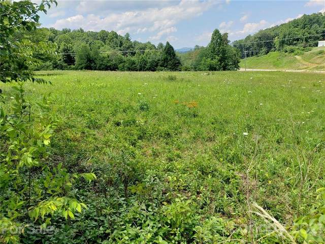 7 Brookshire Road, Leicester, NC 28748 (#3763432) :: NC Mountain Brokers, LLC