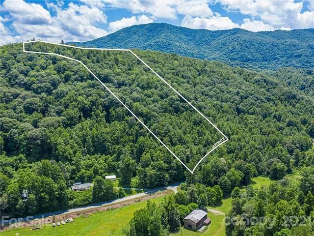 9999 Big Creek Road, Marshall, NC 28753 (#3763538) :: Stephen Cooley Real Estate Group