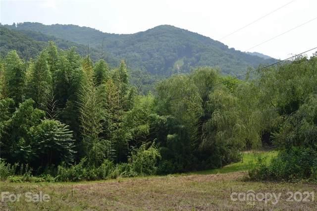 224 Eller Cove Road, Weaverville, NC 28787 (#3764252) :: Caulder Realty and Land Co.