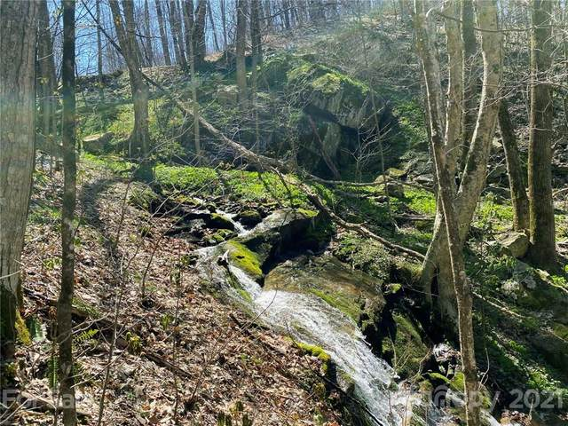 TBD Rock House Road, Hot Springs, NC 28743 (#3764285) :: Home Finder Asheville