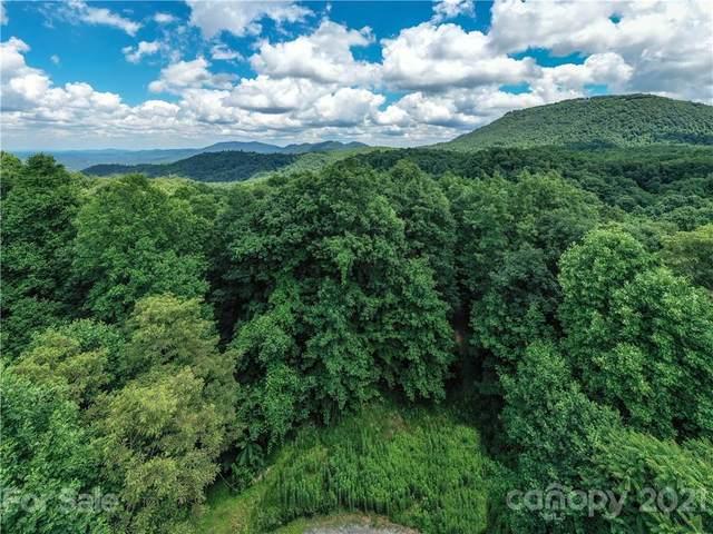 99999 Laurel Mountain Trail #4, Black Mountain, NC 28711 (#3764625) :: DK Professionals