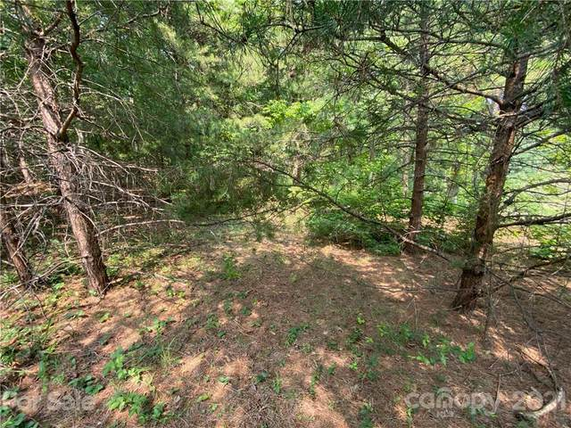 0 Whispering Pines Circle #32, Forest City, NC 28043 (#3764834) :: Puma & Associates Realty Inc.
