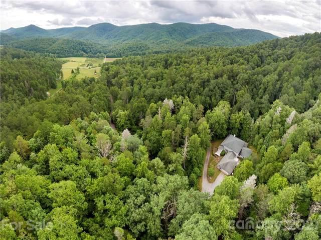 5850 Green River Road, Zirconia, NC 28790 (#3765826) :: NC Mountain Brokers, LLC