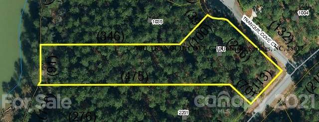 1011 Tranquil Cove Court, Connelly Springs, NC 28612 (#3765852) :: Puma & Associates Realty Inc.