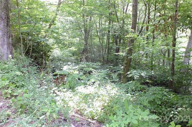 Lot 19 Long Branch Road #19, Maggie Valley, NC 28751 (#3766046) :: NC Mountain Brokers, LLC