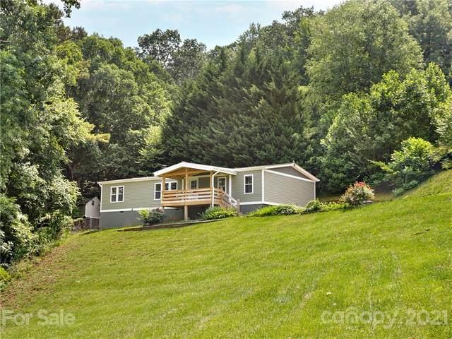 31 Honey Locust Lane, Candler, NC 28715 (#3766050) :: Home Finder Asheville