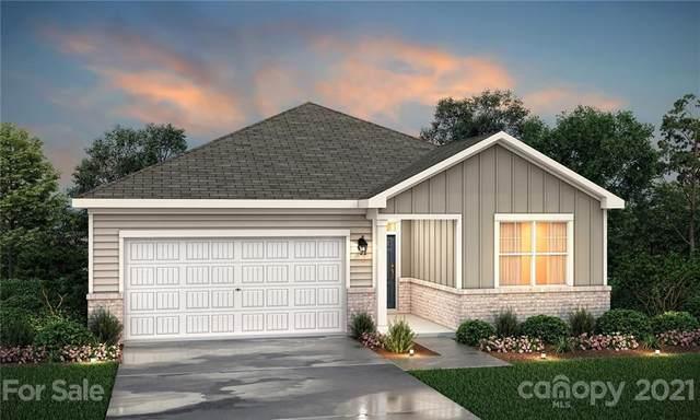 3128 Bluff Hill Lane #102, Charlotte, NC 28215 (#3766270) :: High Performance Real Estate Advisors