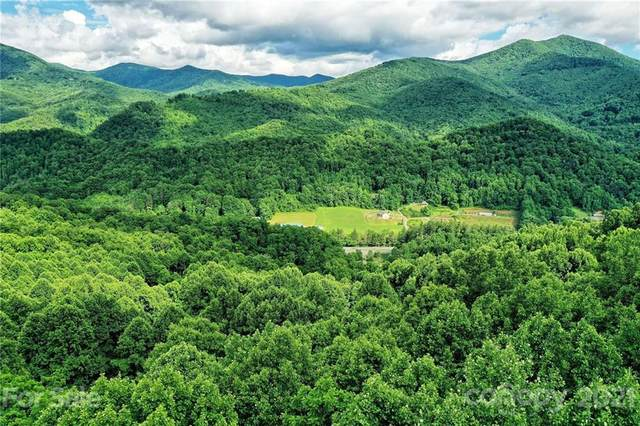 Lot 48 Forest Valley Drive #48, Sylva, NC 28779 (#3766989) :: Rowena Patton's All-Star Powerhouse