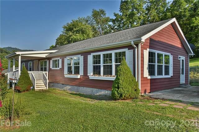 699 Pleasant Hill Road, Clyde, NC 28721 (#3767147) :: High Vistas Realty