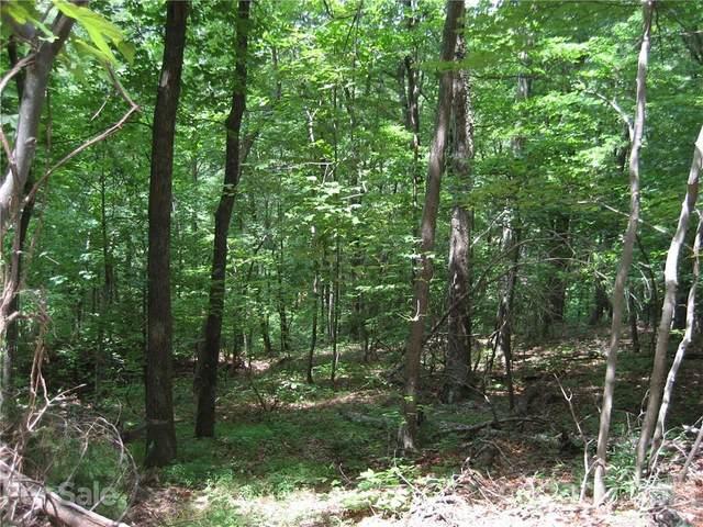 000 Bobcat Trail, Saluda, NC 28773 (#3767228) :: Premier Realty NC