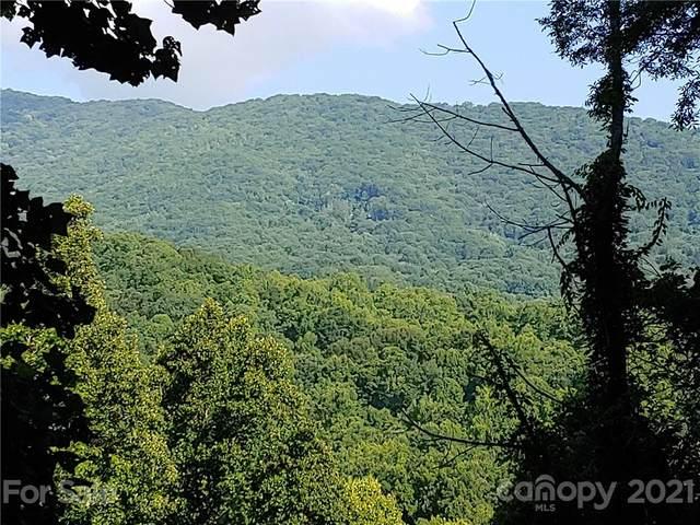 185 Pointer Trail #7, Waynesville, NC 28786 (MLS #3767251) :: RE/MAX Journey