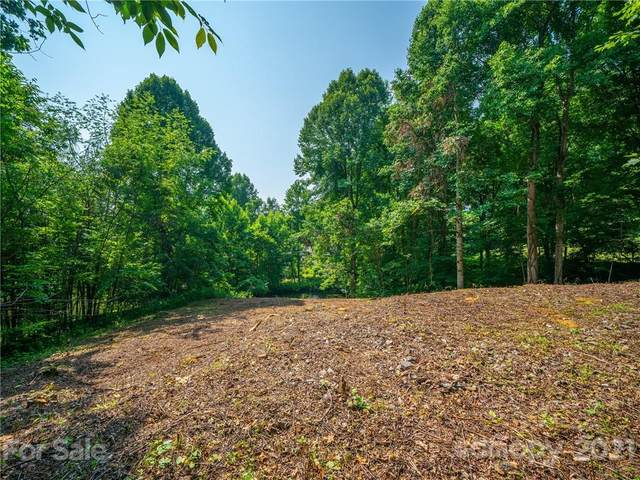 638 Crystal Tree Drive, Waynesville, NC 28785 (#3767406) :: MartinGroup Properties