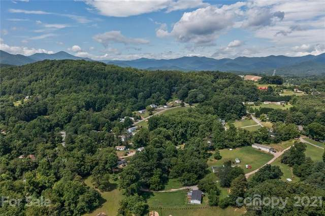 518 Case Cove Road, Candler, NC 28715 (#3767431) :: Scarlett Property Group