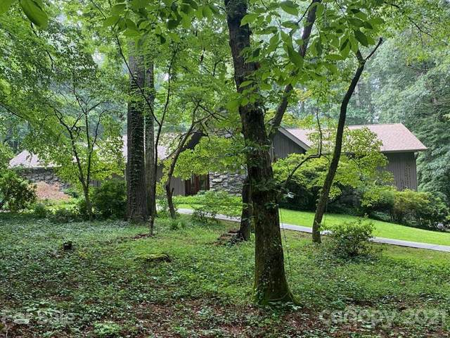 195 Tranquility Place #195, Hendersonville, NC 28739 (#3767596) :: DK Professionals