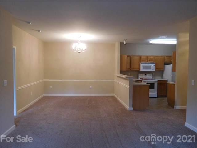 17241 Doe Valley Court, Cornelius, NC 28031 (#3767859) :: Homes with Keeley | RE/MAX Executive
