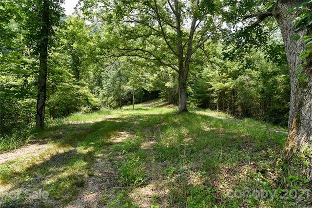 Lot 13 The Vines Boulevard Lot 13, Marshall, NC 28753 (#3767870) :: Mossy Oak Properties Land and Luxury