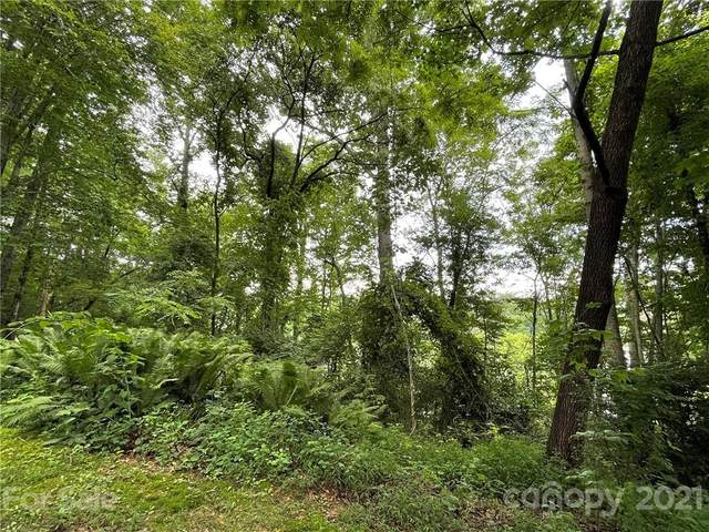 TBD Estabrook Avenue, Brevard, NC 28712 (MLS #3767875) :: RE/MAX Journey