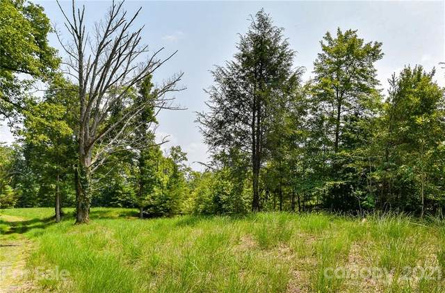 421 The Vines Boulevard #16, Marshall, NC 28753 (#3767898) :: Mossy Oak Properties Land and Luxury