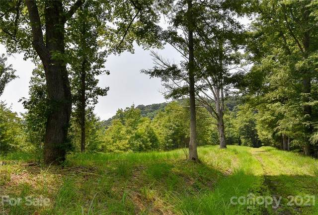 387 The Vines Boulevard, Marshall, NC 28753 (#3767916) :: Home Finder Asheville