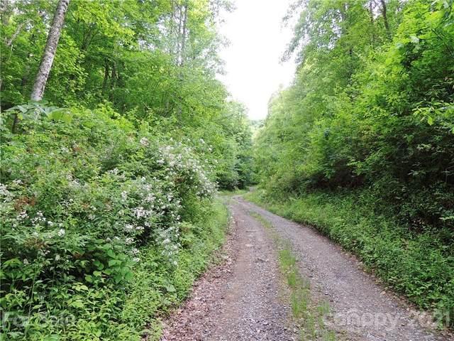 64 Clay View Drive, Fairview, NC 28730 (#3768141) :: TeamHeidi®