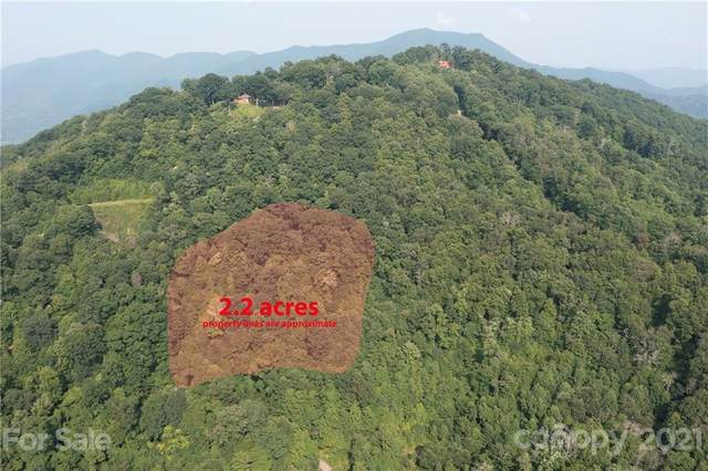 00 Carnation Drive E, Clyde, NC 28721 (#3768245) :: Mossy Oak Properties Land and Luxury