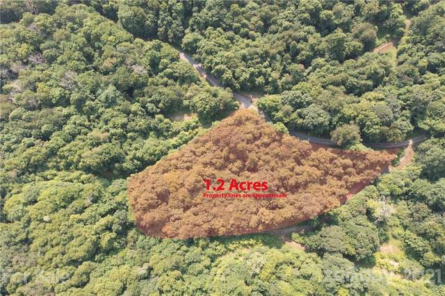 00 Justin Ridge I, Clyde, NC 28721 (#3768257) :: Mossy Oak Properties Land and Luxury
