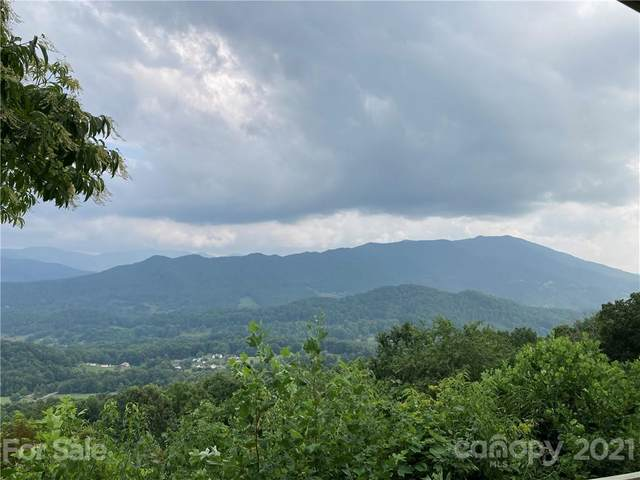 196 Glen Eagle Drive, Waynesville, NC 28786 (#3768521) :: SearchCharlotte.com