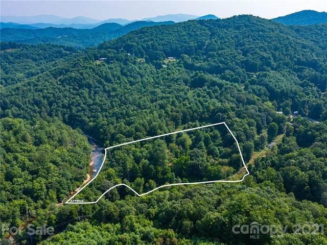 200 Ossie Gouge Road, Burnsville, NC 28714 (#3768547) :: Carolina Real Estate Experts