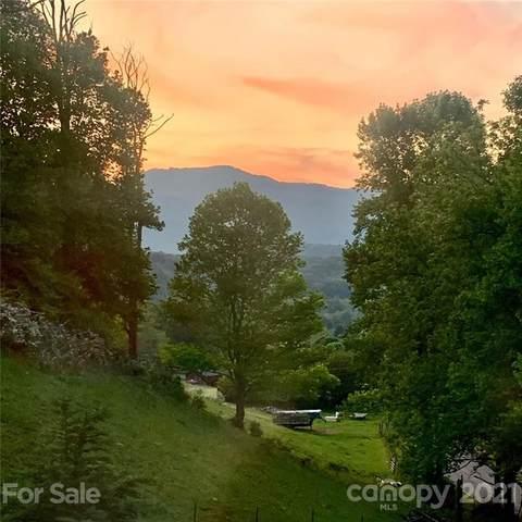 1004 Lickstone Road, Waynesville, NC 28786 (#3768575) :: Willow Oak, REALTORS®