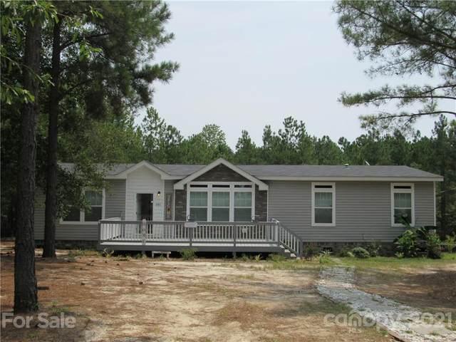 381 Jack Jordan Road, Jefferson, SC 29718 (#3769008) :: Carolina Real Estate Experts
