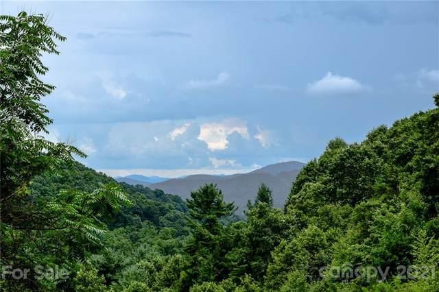 99999 Spring Creek Trail #7, Asheville, NC 28806 (#3769122) :: Homes Charlotte