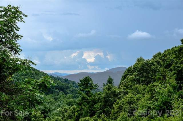 99999 Spring Creek Trail #10, Asheville, NC 28806 (#3769217) :: The Snipes Team | Keller Williams Fort Mill