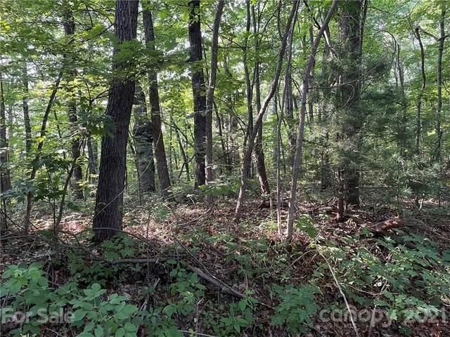 954 River Ridges Road, Zirconia, NC 28790 (#3769283) :: Carolina Real Estate Experts