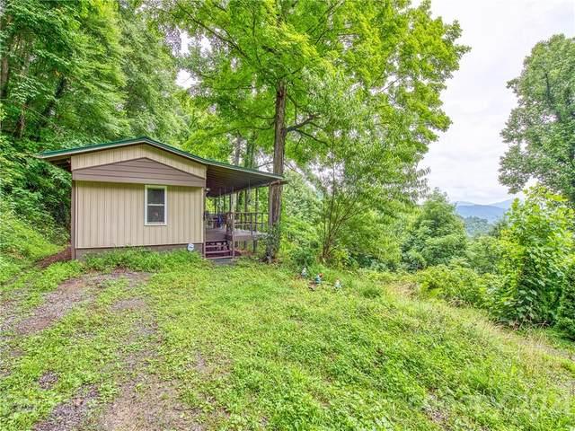 162 Lookout Lane, Waynesville, NC 28785 (#3769496) :: Willow Oak, REALTORS®