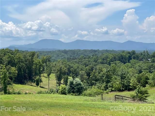 2330 Red Fox Road, Tryon, NC 28782 (#3769653) :: Robert Greene Real Estate, Inc.