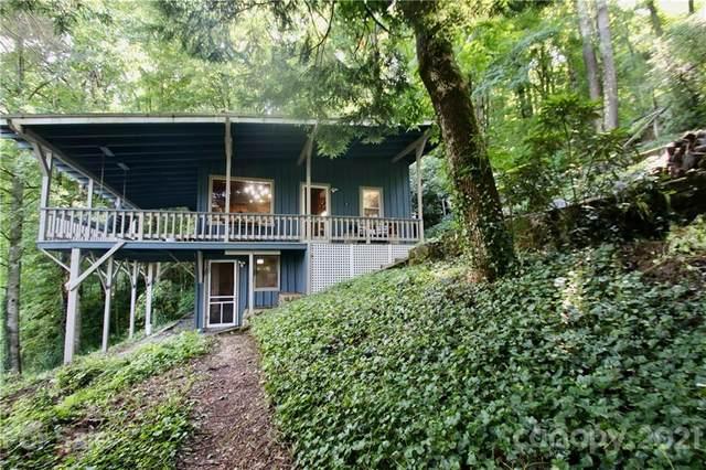 1762 Cabin Flats Road, Balsam, NC 28707 (#3770561) :: Love Real Estate NC/SC
