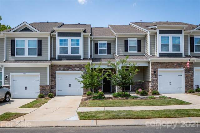 1077 Chicory Trace, Lake Wylie, SC 29710 (#3770723) :: Carolina Real Estate Experts
